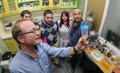 Estudio permitirá usar métodos más efectivos para combatir a las arañas de rincón