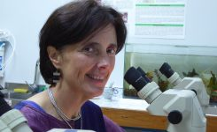 Doctora Kathleen Whitlock es la primera presidenta electa de América Latina de la IZFS